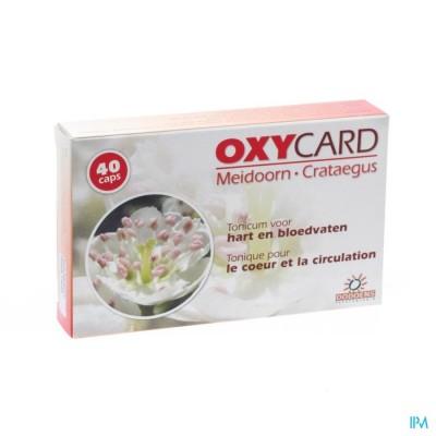 Oxycard Meidoorn Extr Gel 40x300mg